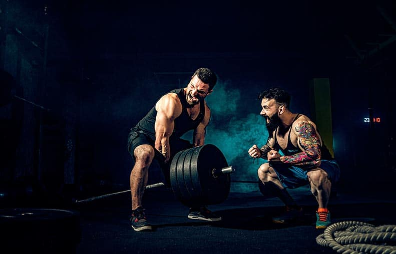 Parallelo Health - your source for health, workouts, food, supplements and more - blog - Bro science – The Bro split vs Push-Pull-Legs - training