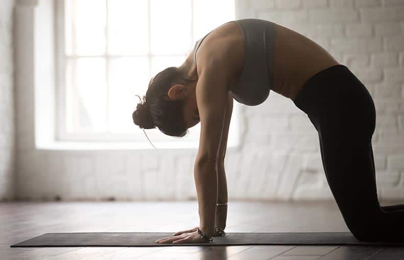 Parallelo Health - your source for health, workouts, food, supplements and more - blog - Bedtime Yoga - The 6 Best Poses So You Can Sleep Better - cat pose