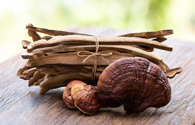 Parallelo Health - your source for health, workouts, food, supplements and more - blog - Good, Wholesome Food Series - Foods That Heal - Reishi Mushrooms