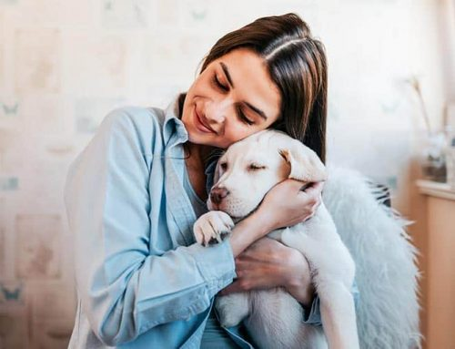 Friends with Benefits, Why Pets Make You Happier and Healthier